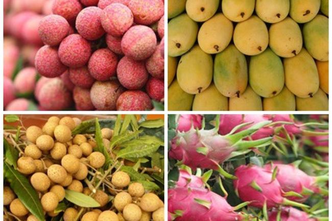 Cục quản lý thị trường tỉnh Phú Yên phát động phong trào tiêu thụ, sử dụng các nông sản trong nước